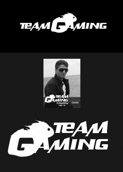 Team Gaming